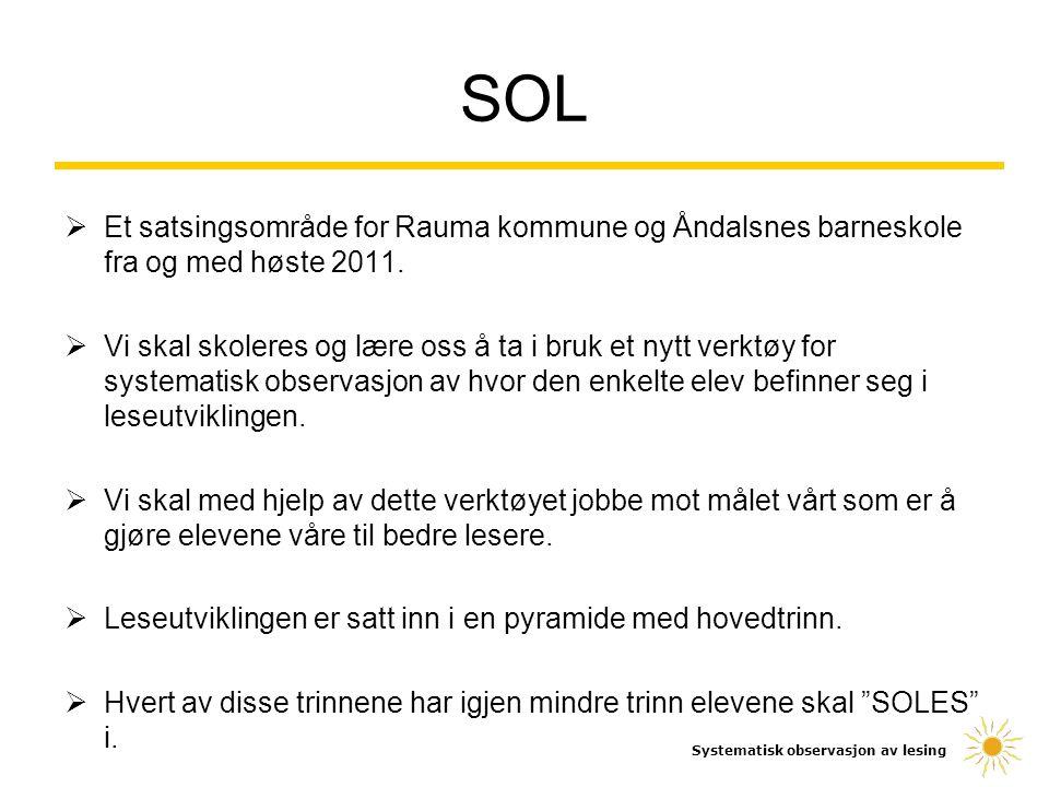  Et satsingsområde for Rauma kommune og Åndalsnes barneskole fra og med høste 2011.  Vi skal skoleres og lære oss å ta i bruk et nytt verktøy for sy