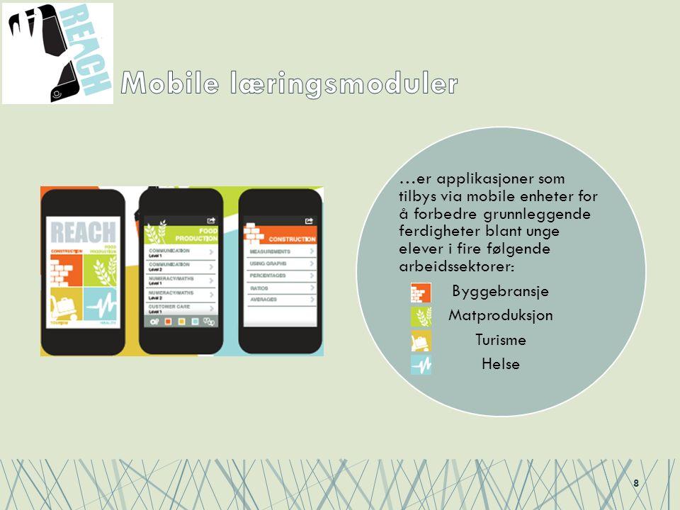 …er applikasjoner som tilbys via mobile enheter for å forbedre grunnleggende ferdigheter blant unge elever i fire følgende arbeidssektorer: Byggebransje Matproduksjon Turisme Helse 8