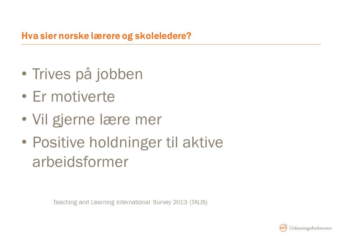 Hva sier norske lærere og skoleledere.