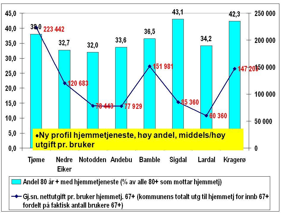  Ny profil hjemmetjeneste, høy andel, middels/høy utgift pr. bruker