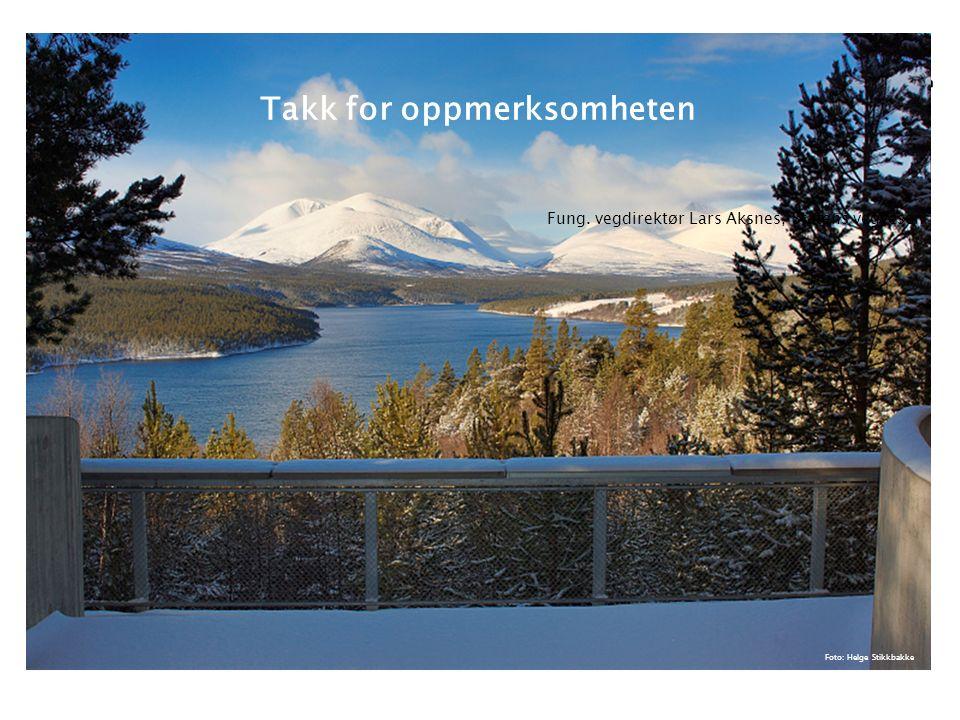 Riksvegutredningen 2015 16/03/2015 Foto: Helge Stikkbakke Takk for oppmerksomheten Fung.