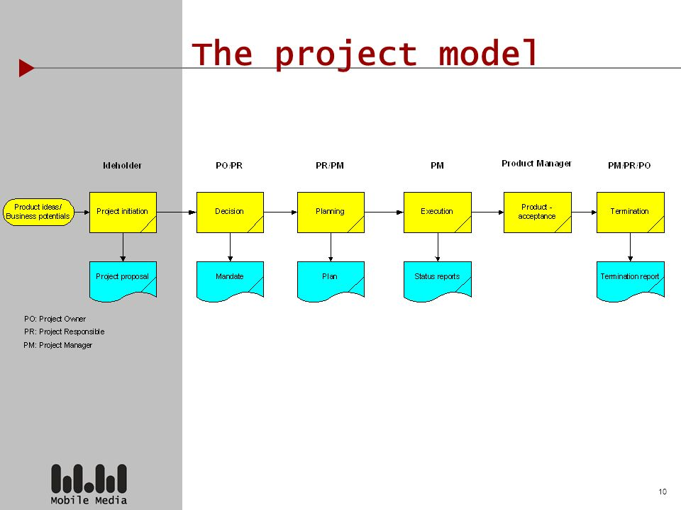 10 The project model