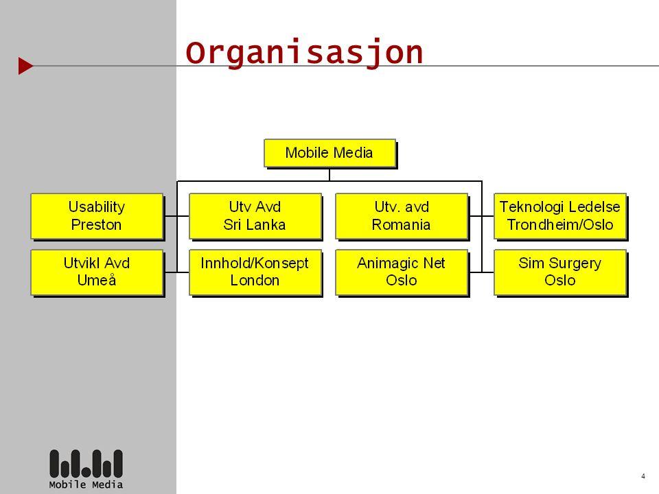 4 Organisasjon