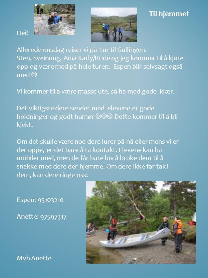 Til hjemmet Hei! Allerede onsdag reiser vi på tur til Gullingen. Sten, Sveinung, Aina Karly/Rune og jeg kommer til å kjøre opp og være med på hele tur