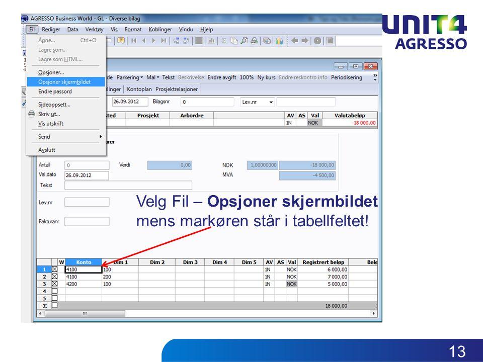 Velg Fil – Opsjoner skjermbildet mens markøren står i tabellfeltet! 13