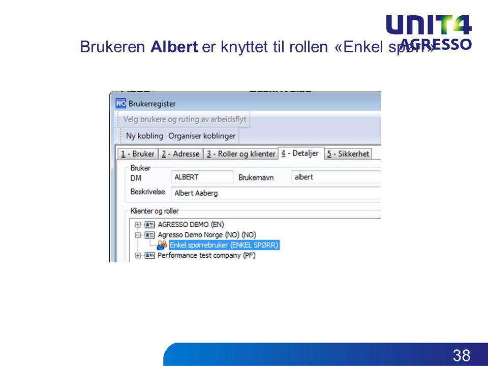 Brukeren Albert er knyttet til rollen «Enkel spørr» 38