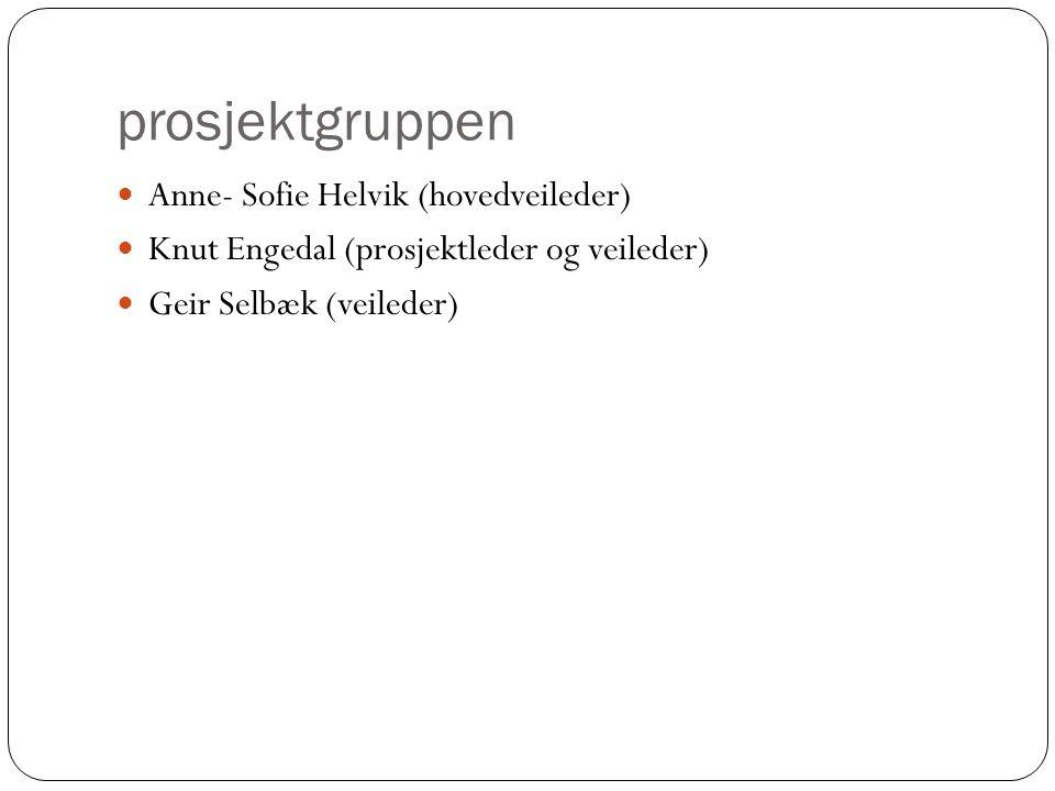 prosjektgruppen Anne- Sofie Helvik (hovedveileder) Knut Engedal (prosjektleder og veileder) Geir Selbæk (veileder)