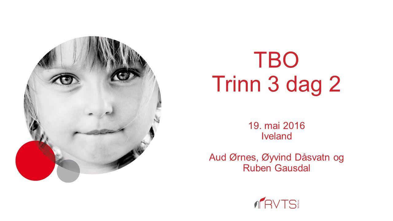 TBO Trinn 3 dag 2 19. mai 2016 Iveland Aud Ørnes, Øyvind Dåsvatn og Ruben Gausdal