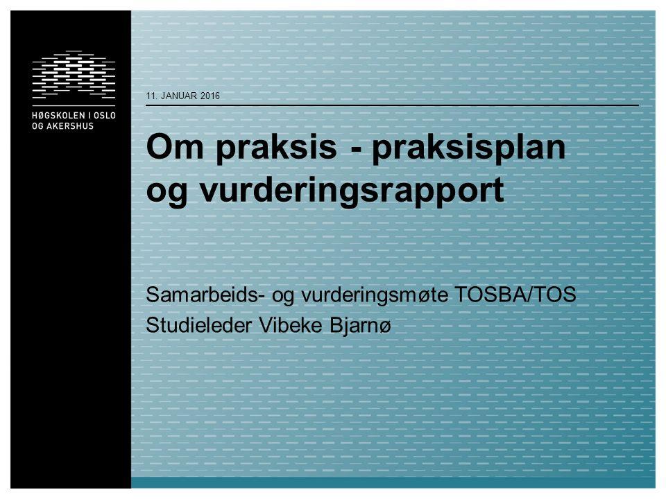 Om praksis - praksisplan og vurderingsrapport Samarbeids- og vurderingsmøte TOSBA/TOS Studieleder Vibeke Bjarnø 11.