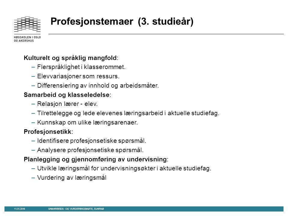 Profesjonstemaer (3. studieår) Kulturelt og språklig mangfold: –Flerspråklighet i klasserommet.