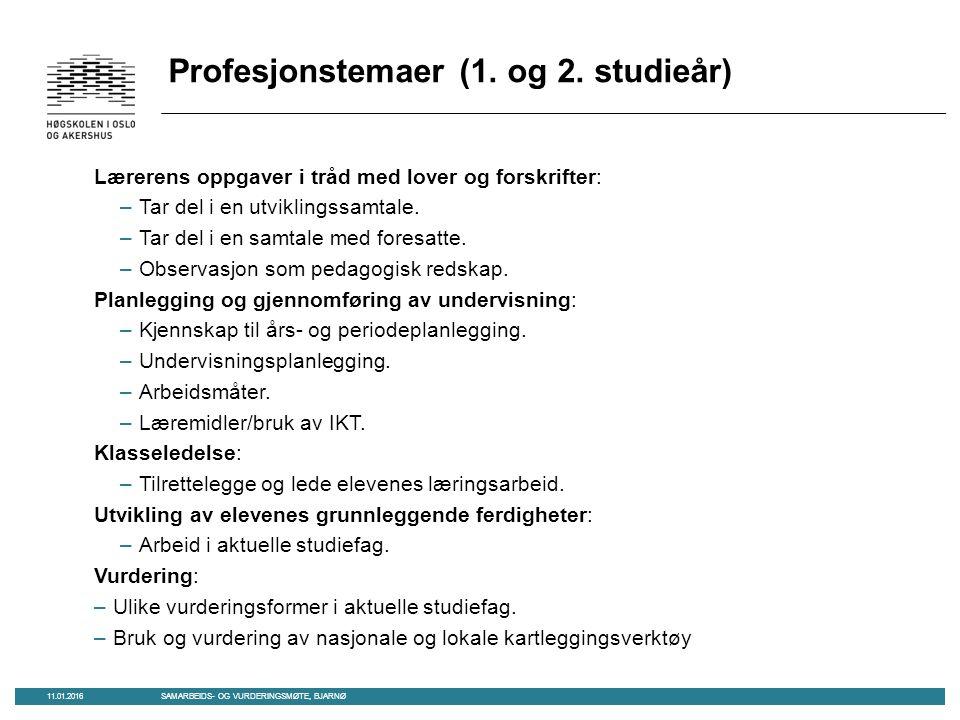 Profesjonstemaer (1. og 2.