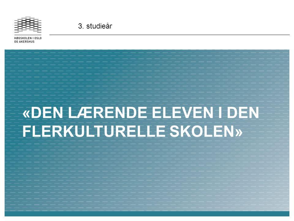 «DEN LÆRENDE ELEVEN I DEN FLERKULTURELLE SKOLEN» 3. studieår