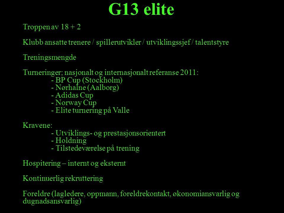 G13 elite Troppen av 18 + 2 Klubb ansatte trenere / spillerutvikler / utviklingssjef / talentstyre Treningsmengde Turneringer; nasjonalt og internasjo