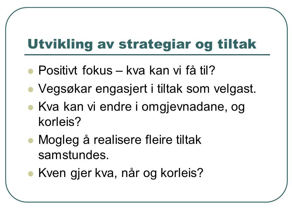 Utvikling av strategiar og tiltak Positivt fokus – kva kan vi få til.