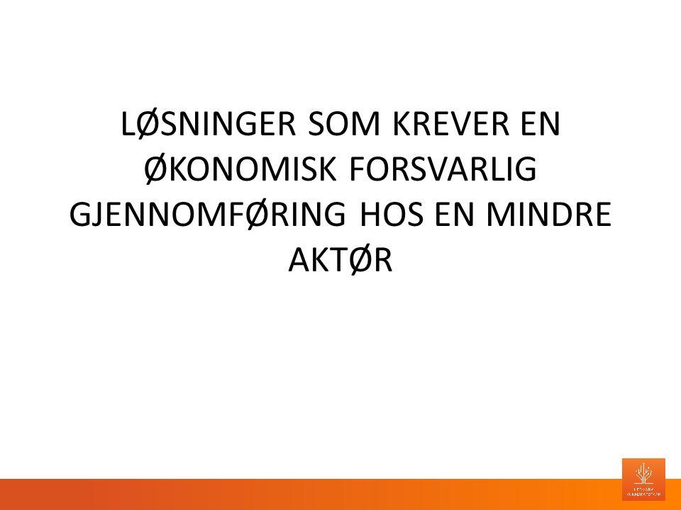 LØSNINGER SOM KREVER EN ØKONOMISK FORSVARLIG GJENNOMFØRING HOS EN MINDRE AKTØR