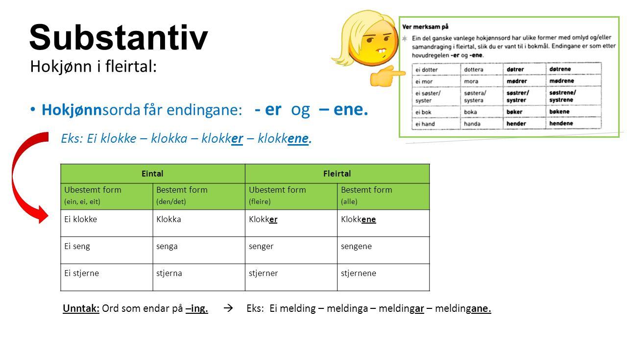 Substantiv Hokjønn i fleirtal: Hokjønnsorda får endingane: - er og – ene.