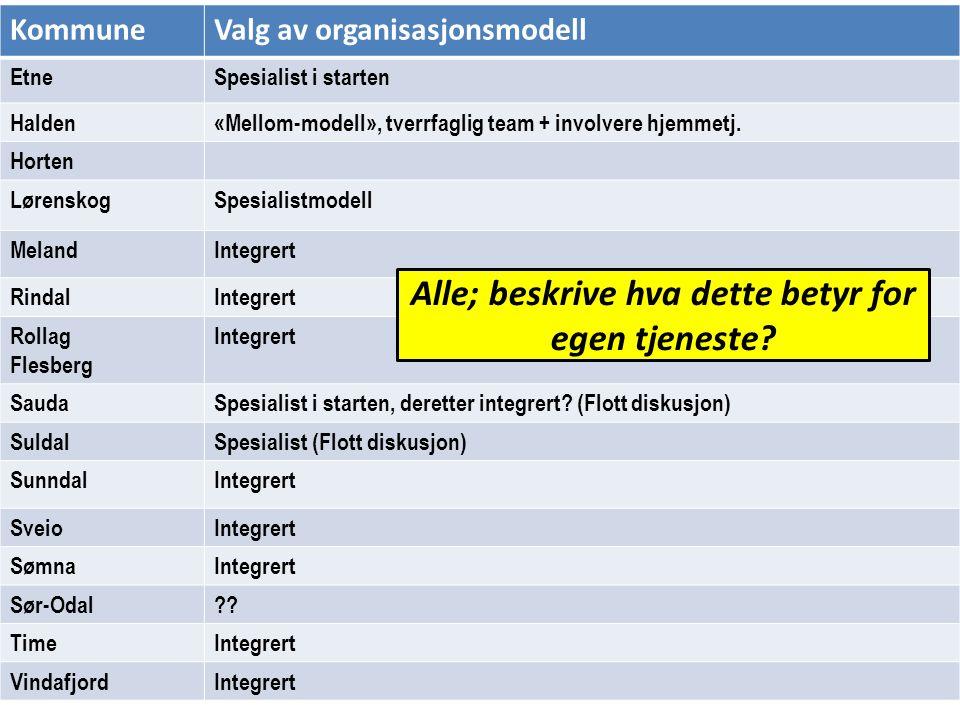 KommuneValg av organisasjonsmodell EtneSpesialist i starten Halden«Mellom-modell», tverrfaglig team + involvere hjemmetj. Horten LørenskogSpesialistmo