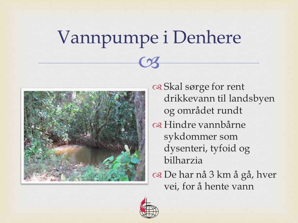  Vannpumpe i Denhere  Skal sørge for rent drikkevann til landsbyen og området rundt  Hindre vannbårne sykdommer som dysenteri, tyfoid og bilharzia  De har nå 3 km å gå, hver vei, for å hente vann