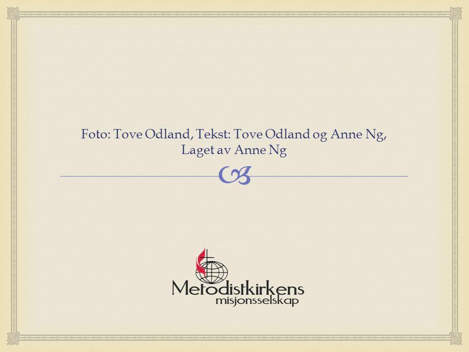  Foto: Tove Odland, Tekst: Tove Odland og Anne Ng, Laget av Anne Ng
