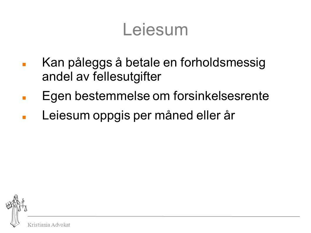 Kristiania Advokat Leiesum Kan påleggs å betale en forholdsmessig andel av fellesutgifter Egen bestemmelse om forsinkelsesrente Leiesum oppgis per måned eller år