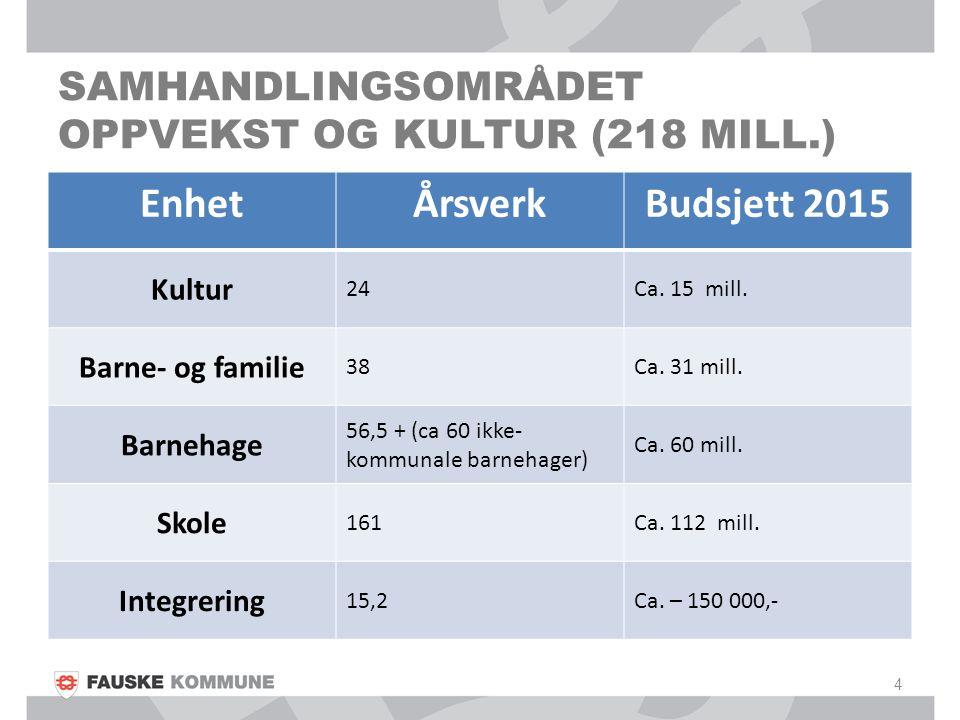 SAMHANDLINGSOMRÅDET OPPVEKST OG KULTUR (218 MILL.) 4 EnhetÅrsverkBudsjett 2015 Kultur 24Ca.