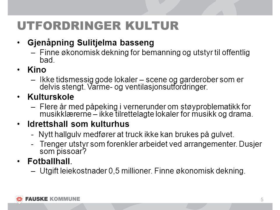 UTFORDRINGER KULTUR Gjenåpning Sulitjelma basseng –Finne økonomisk dekning for bemanning og utstyr til offentlig bad. Kino –Ikke tidsmessig gode lokal