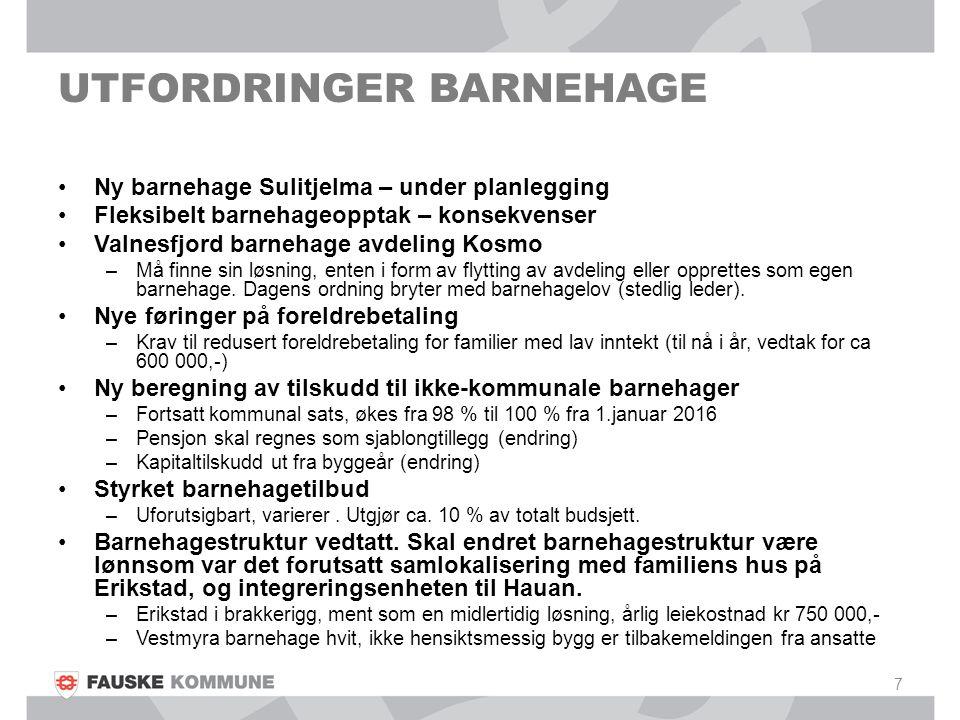 UTFORDRINGER BARNEHAGE Ny barnehage Sulitjelma – under planlegging Fleksibelt barnehageopptak – konsekvenser Valnesfjord barnehage avdeling Kosmo –Må finne sin løsning, enten i form av flytting av avdeling eller opprettes som egen barnehage.