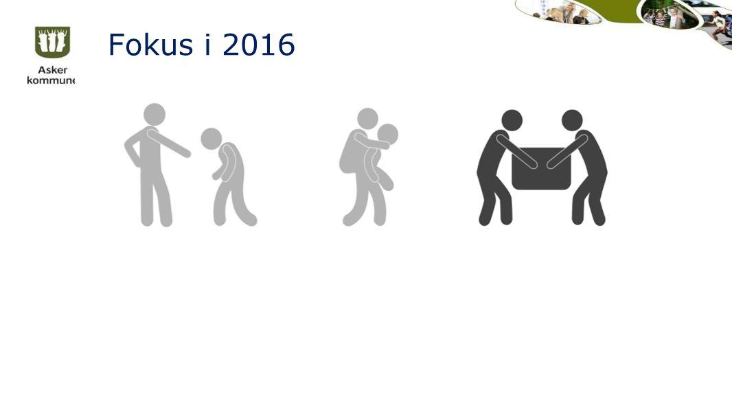 Fokus i 2016