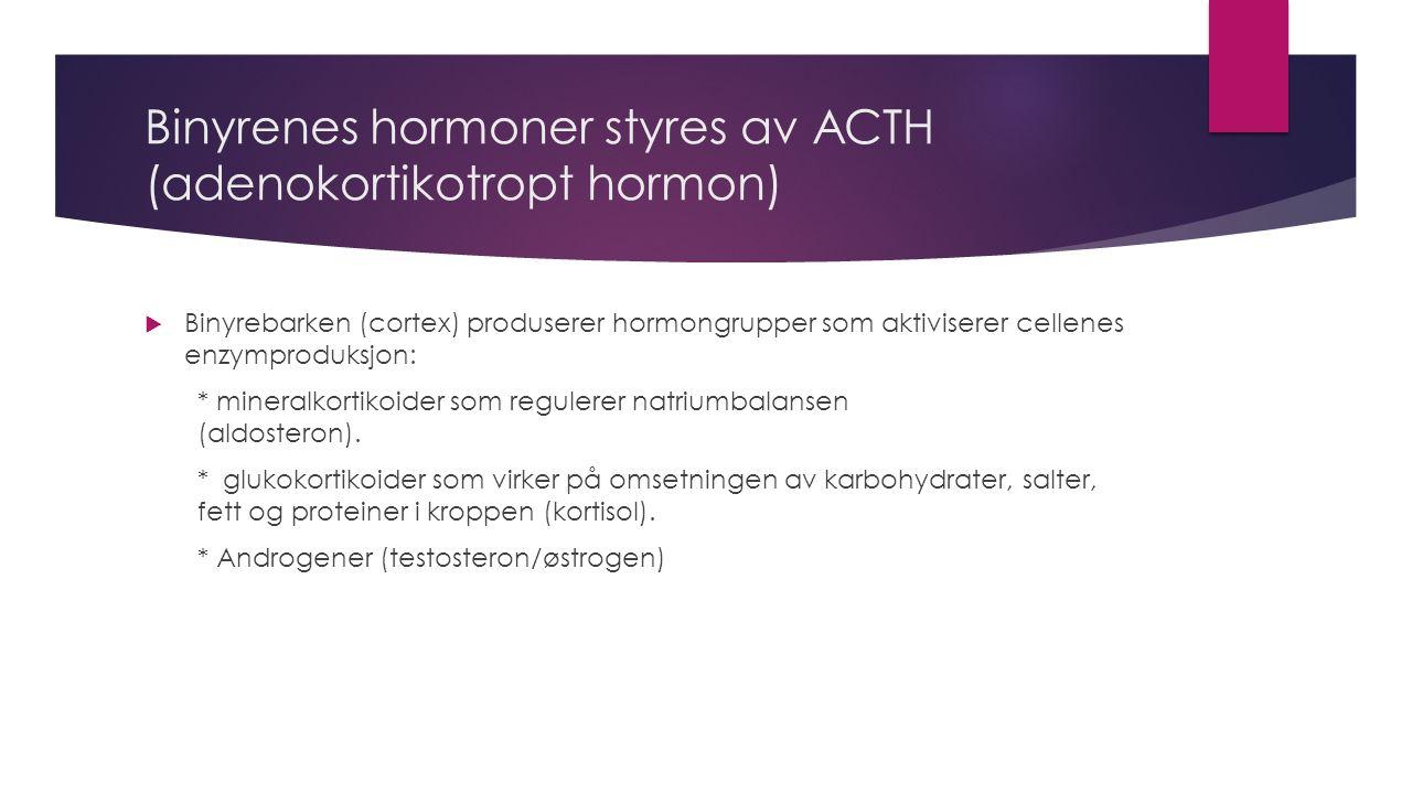 Binyrenes hormoner (fortsatt)  Adrenalin  Noradrenalin
