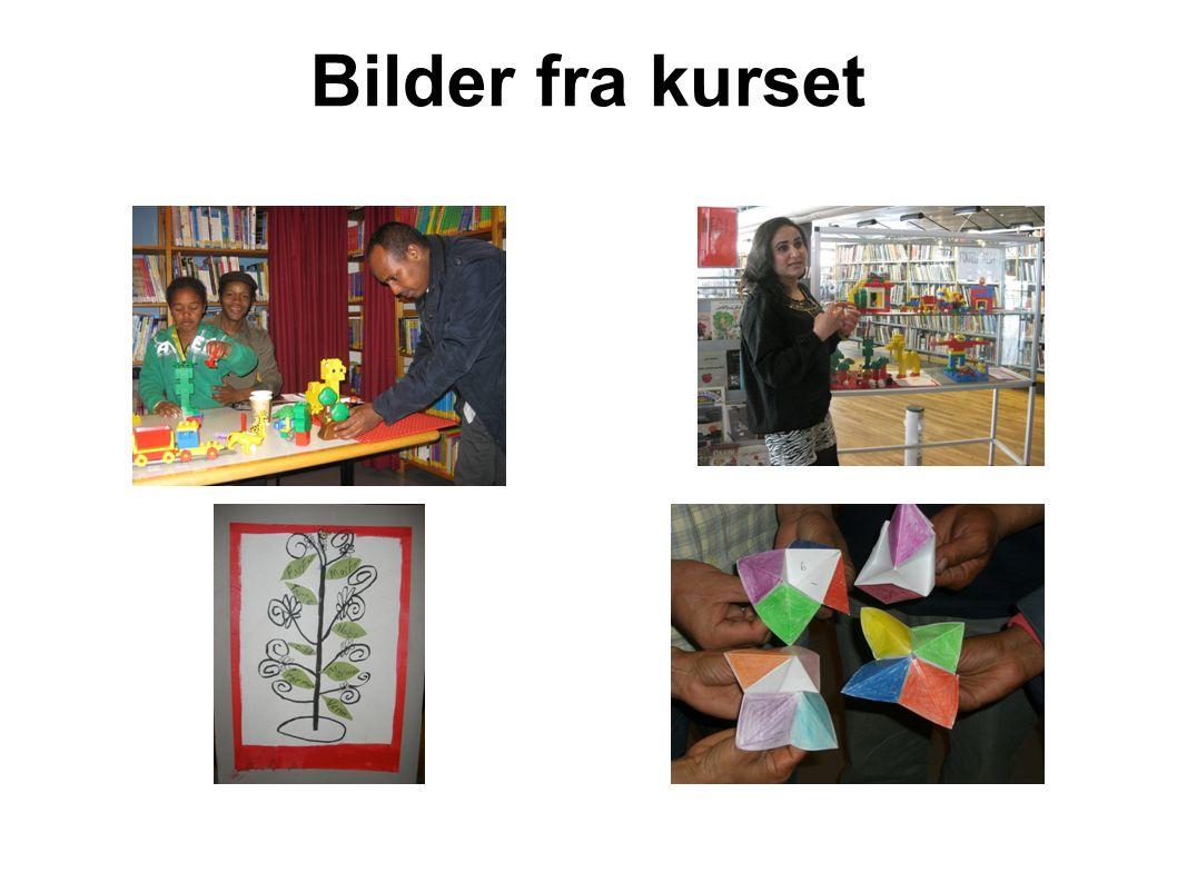 Bilder fra kurset