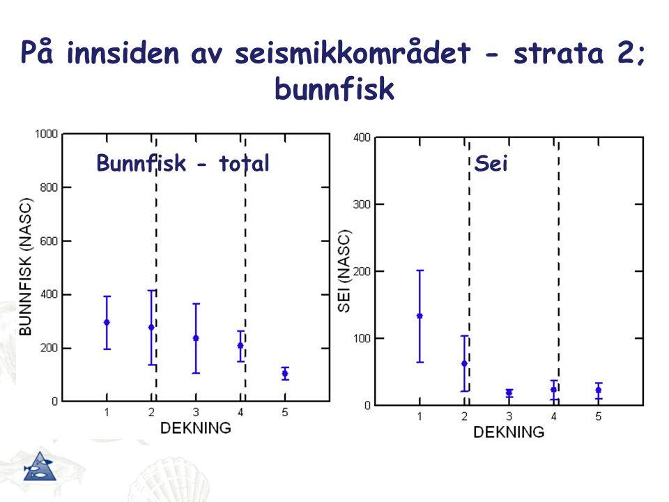 Seismikkområdet - strata 1; sild Kontrollområdet