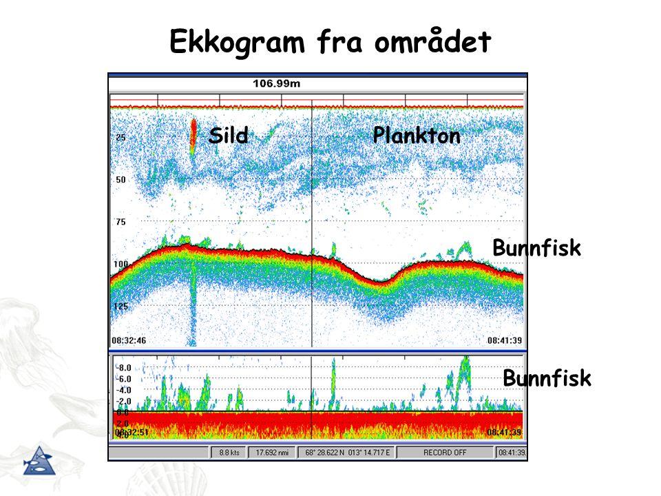 Standard akustisk toktmetodikk Omni-sonar Ekkolodd x 4 frekvenser