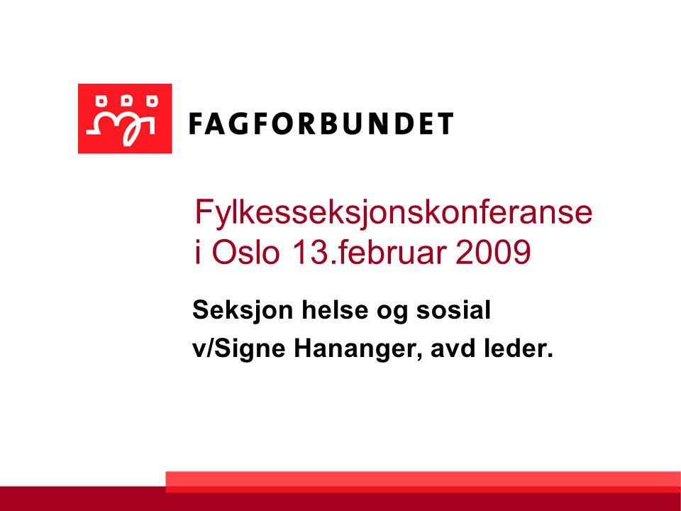 Fylkesseksjonskonferanse i Oslo 13.februar 2009 Seksjon helse og sosial v/Signe Hananger, avd leder.