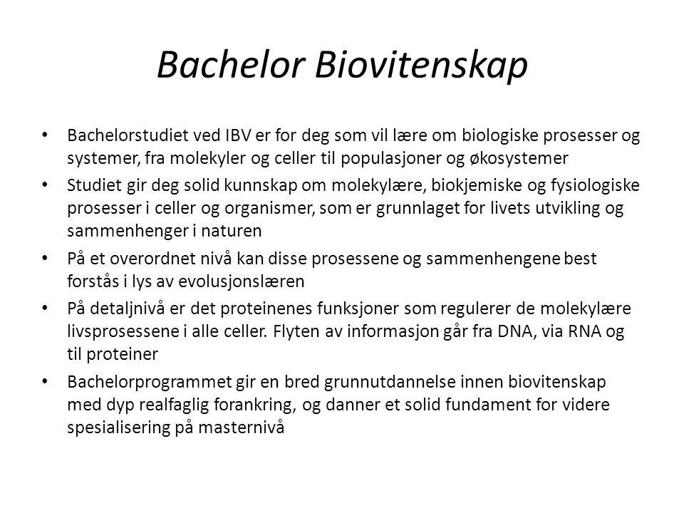 Bachelor Biovitenskap Bachelorstudiet ved IBV er for deg som vil lære om biologiske prosesser og systemer, fra molekyler og celler til populasjoner og økosystemer Studiet gir deg solid kunnskap om molekylære, biokjemiske og fysiologiske prosesser i celler og organismer, som er grunnlaget for livets utvikling og sammenhenger i naturen På et overordnet nivå kan disse prosessene og sammenhengene best forstås i lys av evolusjonslæren På detaljnivå er det proteinenes funksjoner som regulerer de molekylære livsprosessene i alle celler.