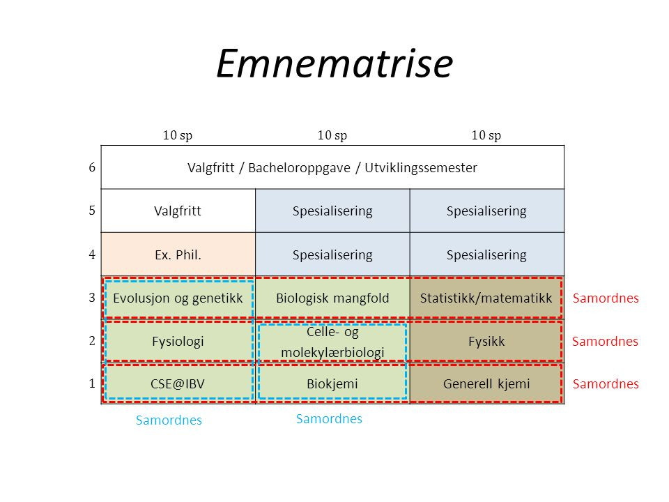 Emnematrise 10 sp 6 Valgfritt / Bacheloroppgave / Utviklingssemester 5 ValgfrittSpesialisering 4 Ex.