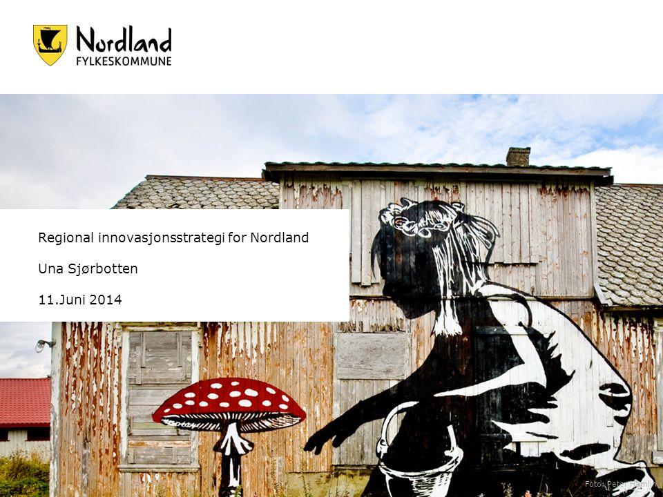 Regional innovasjonsstrategi for Nordland Una Sjørbotten 11.Juni 2014 Foto: Peter Hamlin