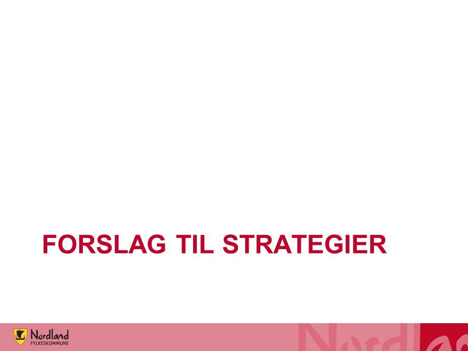 FORSLAG TIL STRATEGIER
