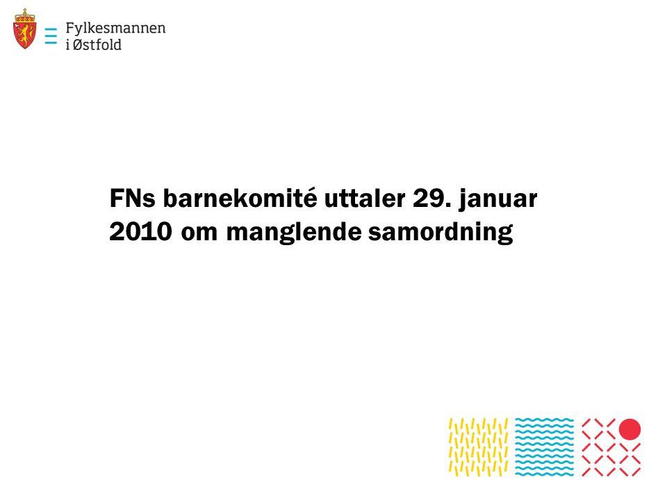 FNs barnekomité uttaler 29. januar 2010 om manglende samordning