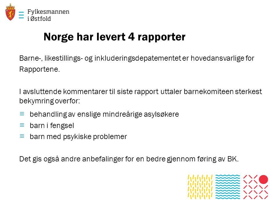 Norge har levert 4 rapporter Barne-, likestillings- og inkluderingsdepatementet er hovedansvarlige for Rapportene.