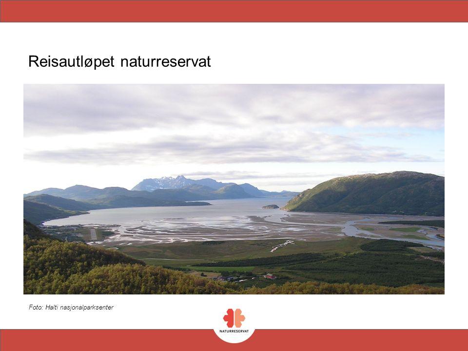 Reisautløpet naturreservat Foto: Halti nasjonalparksenter