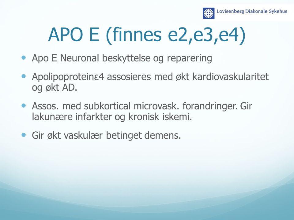 APO E (finnes e2,e3,e4) Apo E Neuronal beskyttelse og reparering Apolipoproteinε4 assosieres med økt kardiovaskularitet og økt AD. Assos. med subkorti
