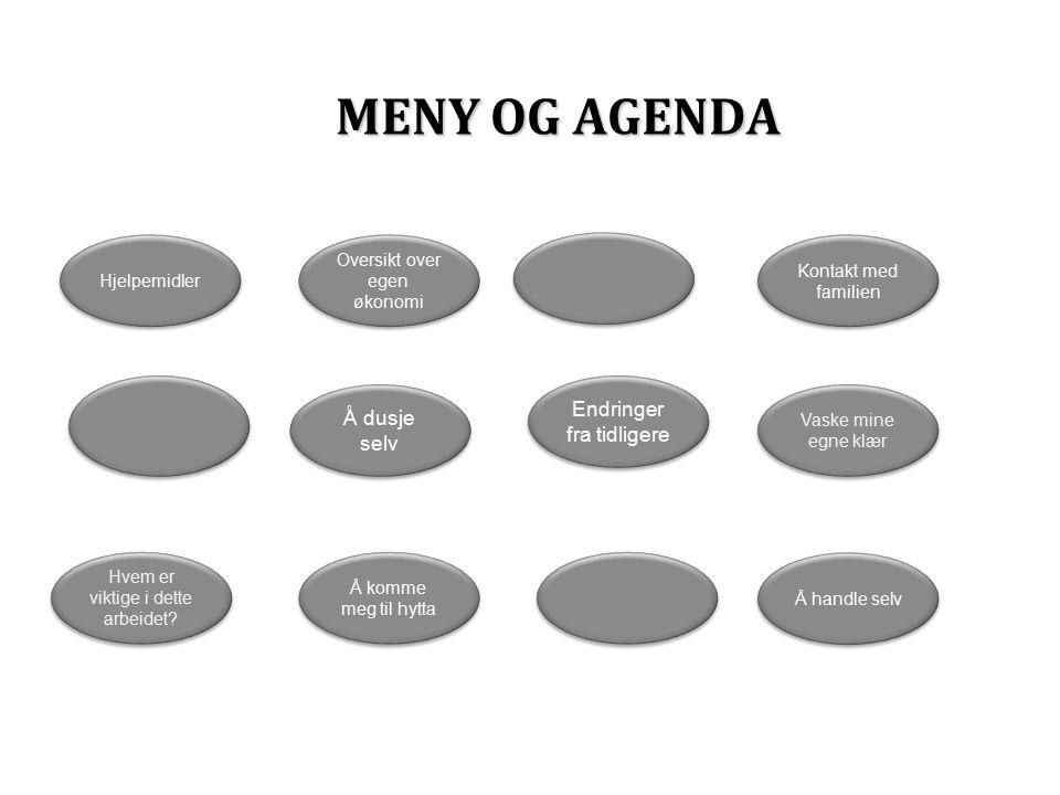 MENY OG AGENDA Hjelpemidler Hvem er viktige i dette arbeidet.