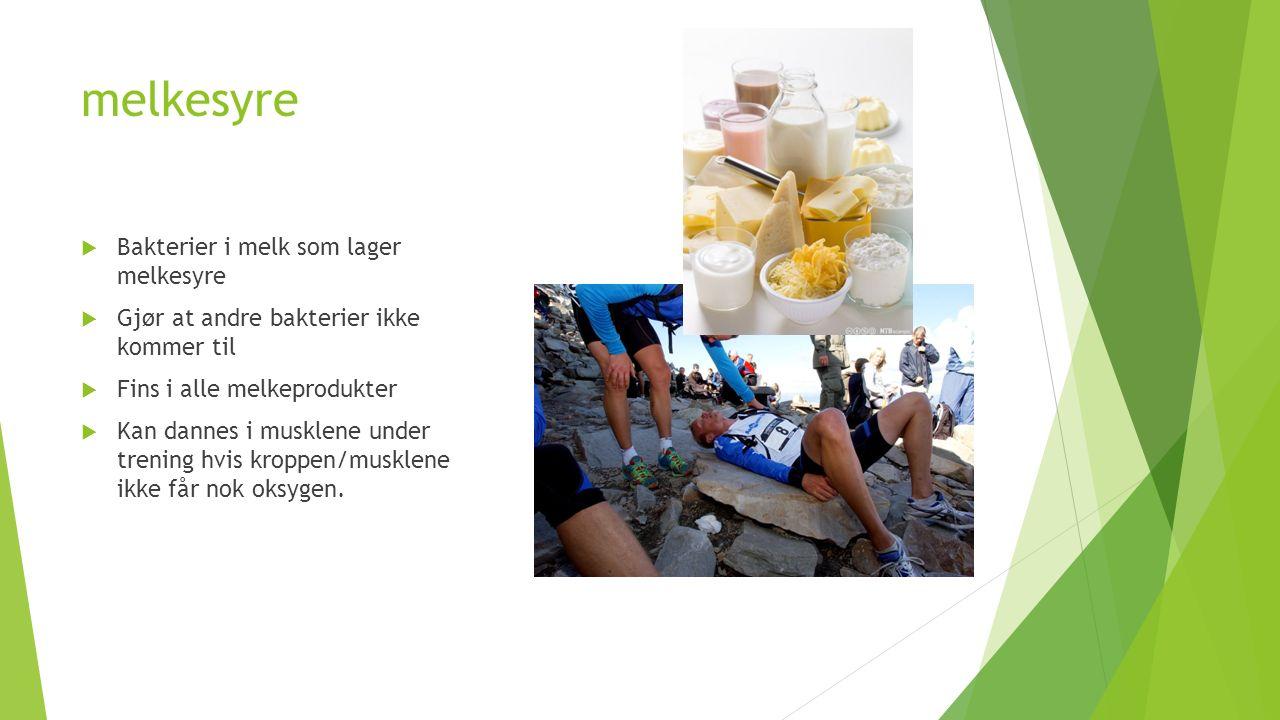 melkesyre  Bakterier i melk som lager melkesyre  Gjør at andre bakterier ikke kommer til  Fins i alle melkeprodukter  Kan dannes i musklene under