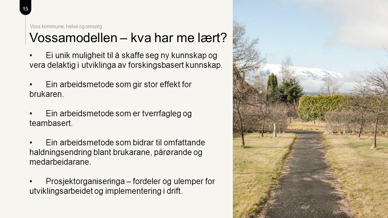 15 Voss kommune, helse og omsorg Vossamodellen – kva har me lært.