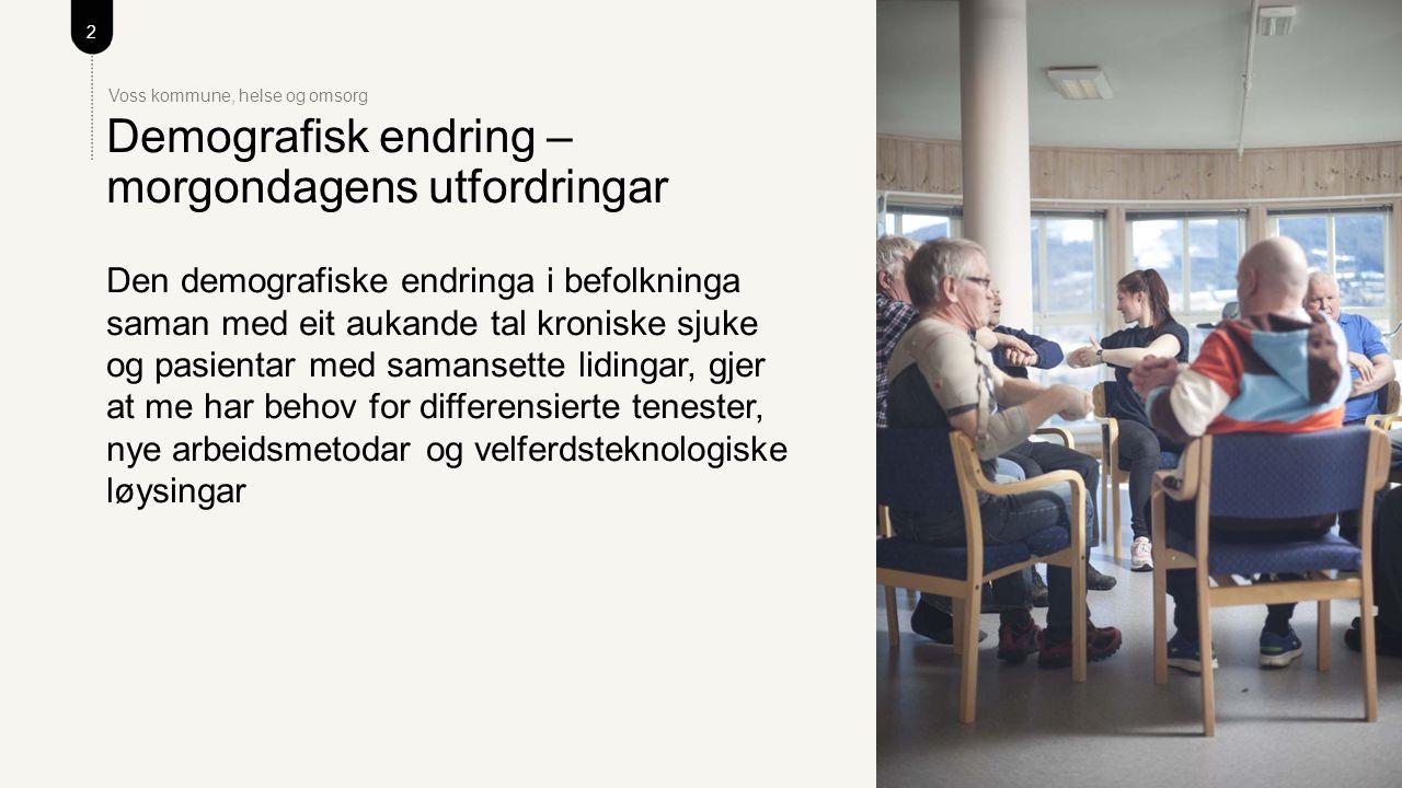 13 Voss kommune, helse og omsorg Målsettingar og tiltak for 2016 – kva gjer me i dag.