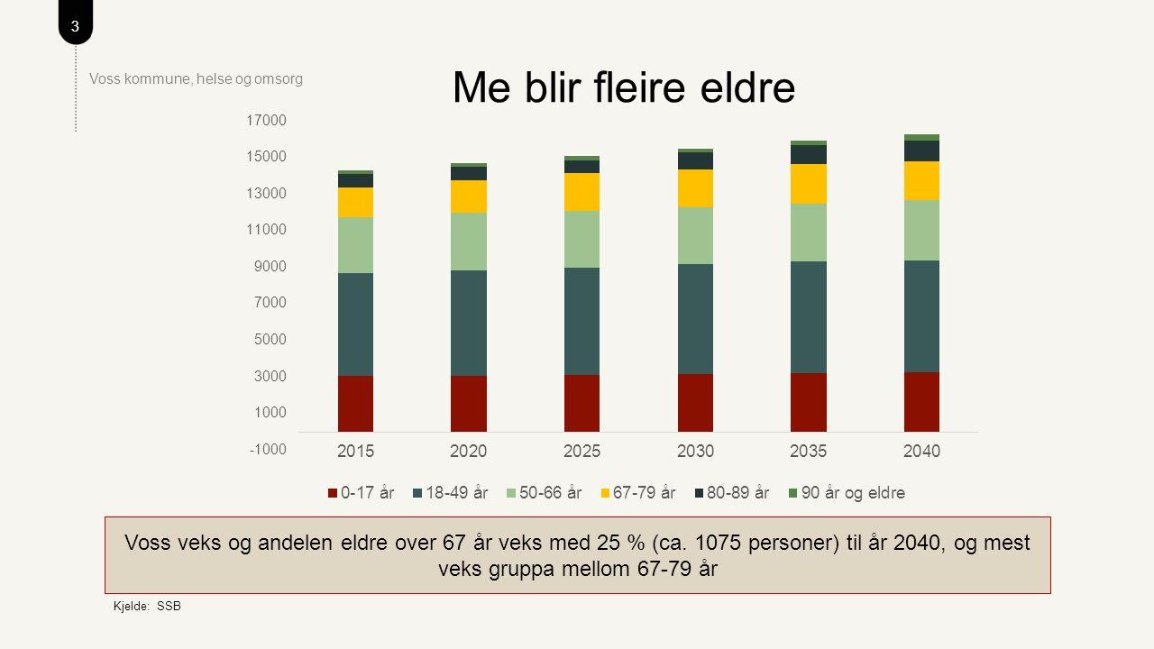 3 Voss kommune, helse og omsorg Me blir fleire eldre Voss veks og andelen eldre over 67 år veks med 25 % (ca.