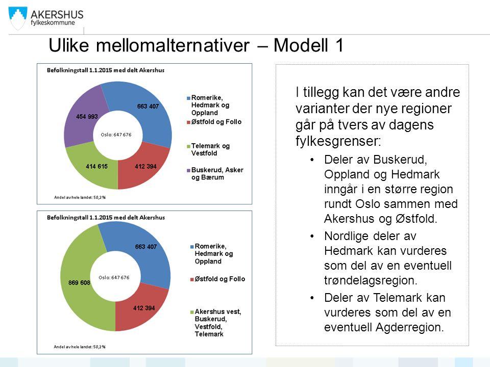 I tillegg kan det være andre varianter der nye regioner går på tvers av dagens fylkesgrenser: Deler av Buskerud, Oppland og Hedmark inngår i en større region rundt Oslo sammen med Akershus og Østfold.