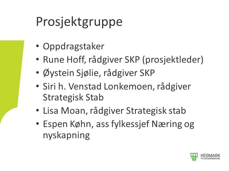 Oppdragstaker Rune Hoff, rådgiver SKP (prosjektleder) Øystein Sjølie, rådgiver SKP Siri h.