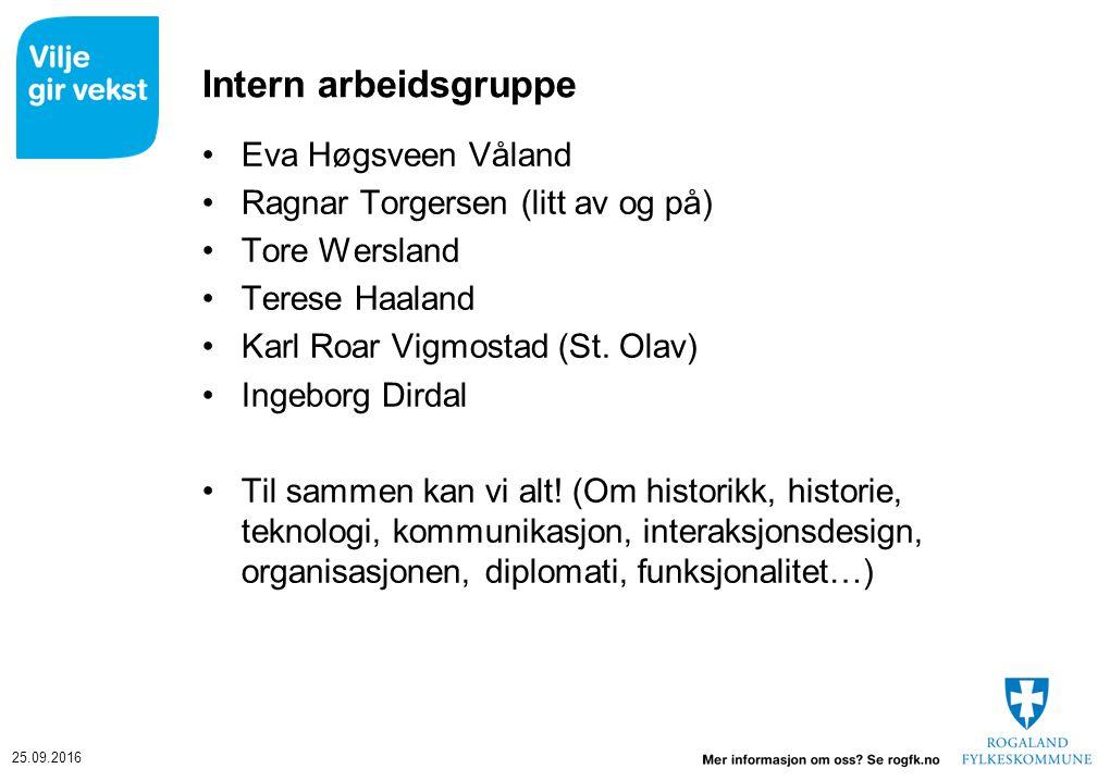Intern arbeidsgruppe Eva Høgsveen Våland Ragnar Torgersen (litt av og på) Tore Wersland Terese Haaland Karl Roar Vigmostad (St.