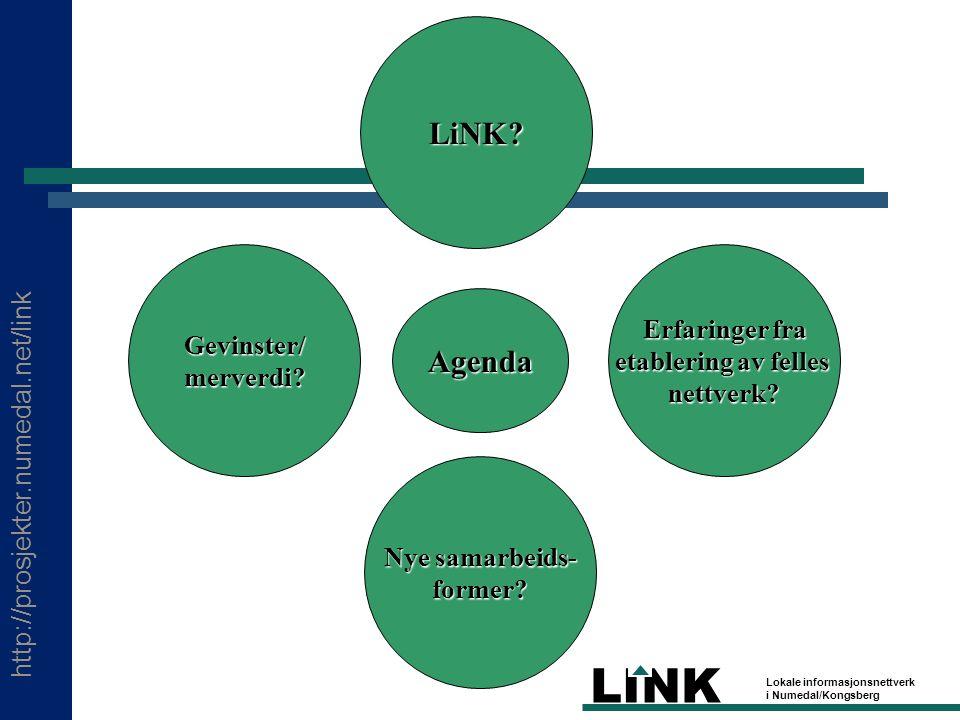 http://prosjekter.numedal.net/link LINK Lokale informasjonsnettverk i Numedal/Kongsberg Hva er LiNK.